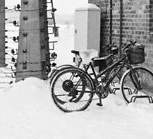 Alternative transport to Auschwitz by Linda  Morrison