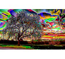 Psychedelic Sunset Photographic Print
