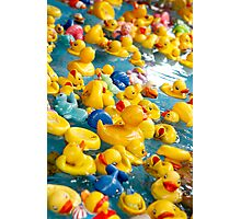 Duckies ........... Photographic Print