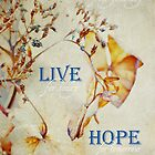 Learn, Live, Hope by JillsyGirl