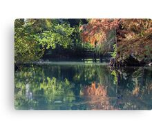 reflection on pond in autumn Canvas Print
