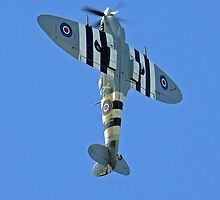 Supermarine Spitfire - Through The Lens by Colin  Williams Photography