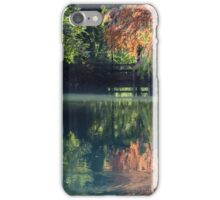 reflection on pond in autumn iPhone Case/Skin