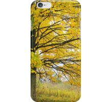 Sugar Maple iPhone Case/Skin