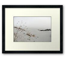 Monahans White Sand Hills ~ Desert Life ~ 4 Framed Print