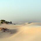 Monahans White Sand Hills ~ Desert Storm ~ 5 by Carla Jensen