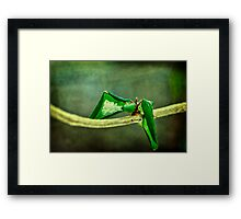 Premature (We're just two lost souls) Framed Print