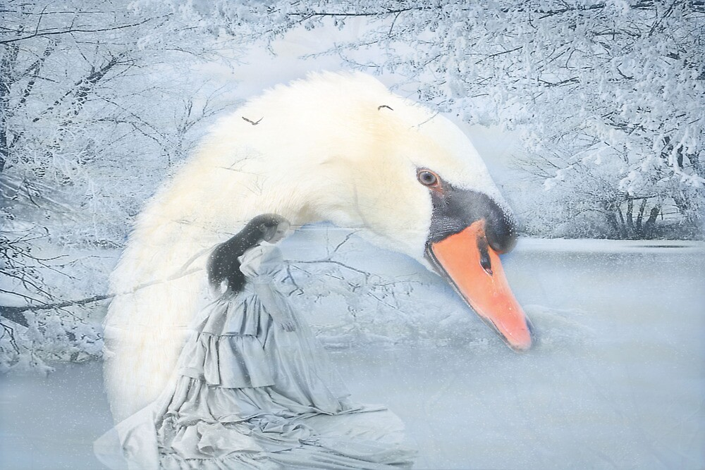 Snow White and the Swan  by NewfieKeith