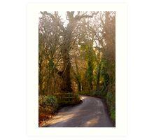 Country Lane, South Hams Art Print