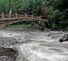 the wooden small bridge by Patrick Monnier