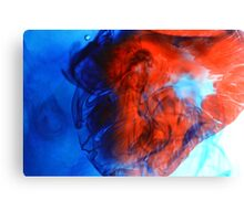 Food Coloring Canvas Print