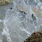 Splash 2 by apye