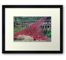 Tower of London poppies  Framed Print