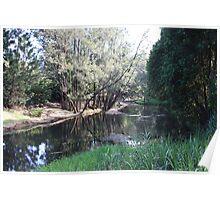 Tallebudgera Creek Before The Flood Poster