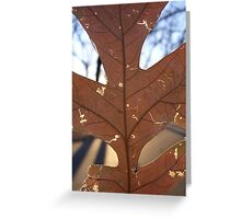 Fractals Greeting Card