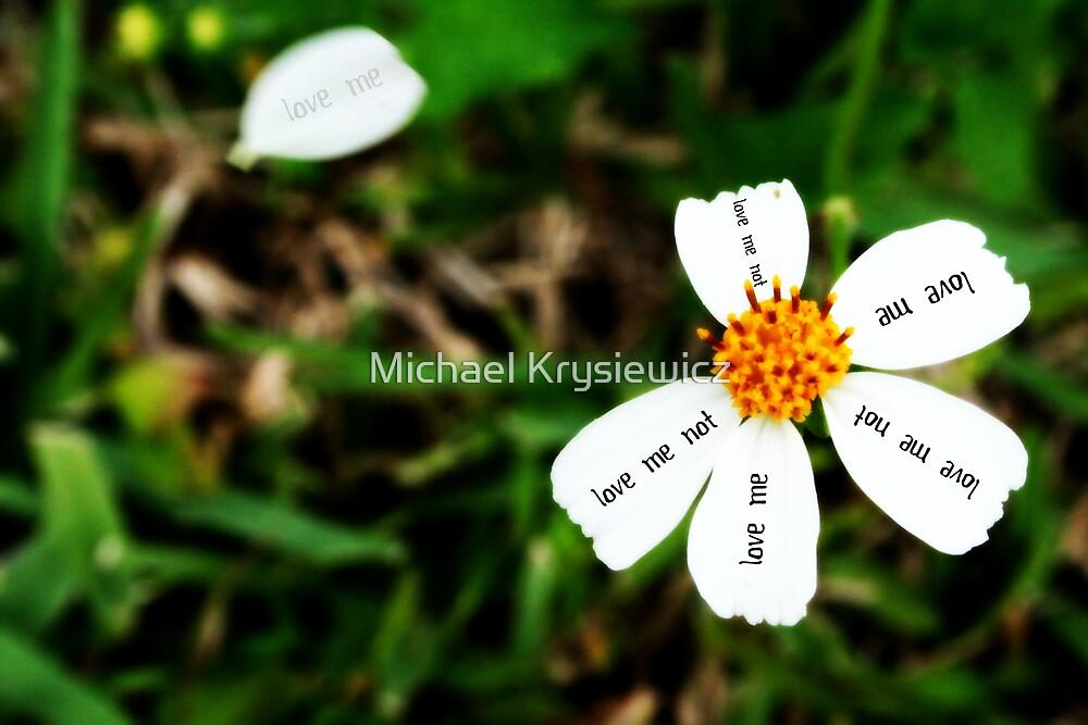 Love me...Love me not by Michael Krysiewicz