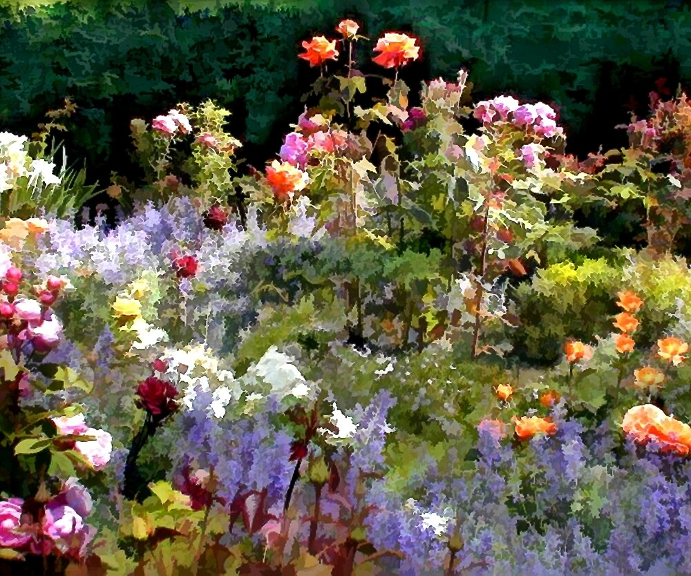 Riot of Roses by Elaine Plesser