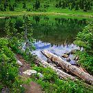 Tipsoo Lake Washington by Jonicool