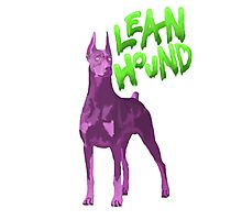 Lean Hound Photographic Print