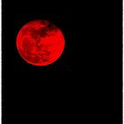 Rebirth.... under blood red moon by jammingene