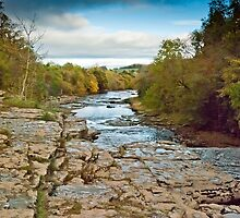Looking Down, Lower Aysgarth Falls by Sue Knowles