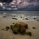 An overcast day at Kurnell Beach by Amelia Chen