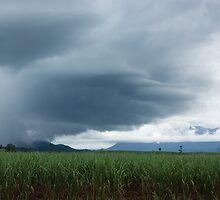 Storm Front I by Kerryn Madsen-Pietsch