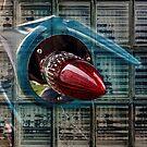 Speed of Light by Steve Walser