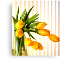 Still life in yellow tulips Canvas Print