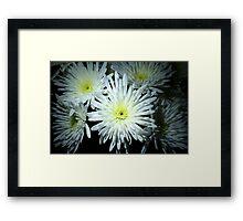 Nature's Firework Framed Print