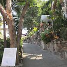 A Street in the Zona Romantica by PtoVallartaMex