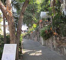 A Street in the Zona Romantica by PtoVallartaMex