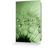 Green drops of dew Greeting Card