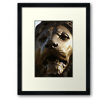 The eye of the beast Framed Print