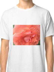 Macro of a Peach Rose in Full Bloom: Hope You Enjoy  Classic T-Shirt