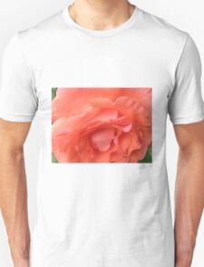 Macro of a Peach Rose in Full Bloom: Hope You Enjoy  T-Shirt