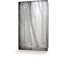 misty forest III Greeting Card