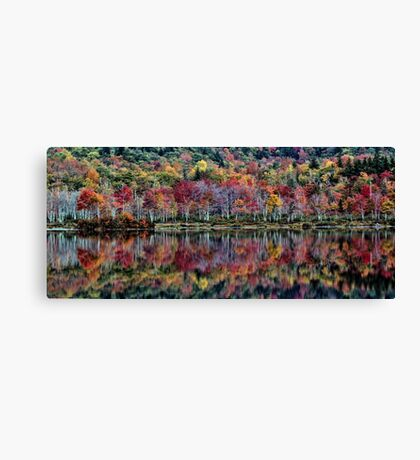 Tapestry of Fall Colors - Basin Pond Canvas Print