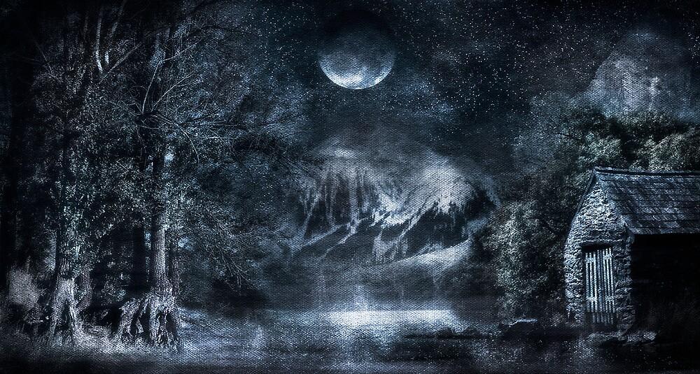 Magical Night by Svetlana Sewell