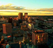 Winnipeg, from Above by Larry Trupp