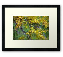Dreamy Photo . 7 ★★★★★ .  ####  Painting by earlyeau ! autumn  ####.  Norway. 2011. « Arrête-toi, tu es si b»  . Views: 749 . Featured Avant - Garde Art. Framed Print