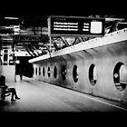 Rotterdam Centraal by Mojca Savicki