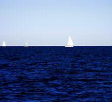 sailing II by Floralynne