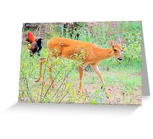 Rural Country Garden Greeting Card