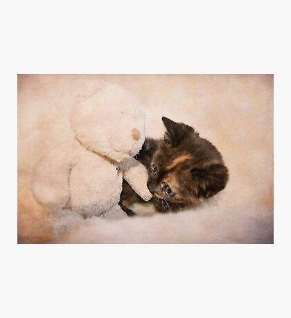 Seriously cute! Photographic Print
