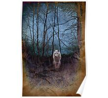 Dark Forest And The Ghost Wolf Poster