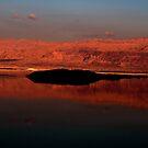 Fired Dead Sea by Marius Brecher