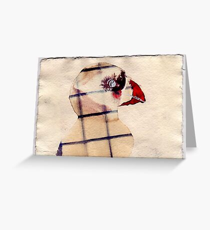 Caged Puffin, 2007 - ink on khadi Greeting Card