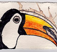 Toucan, 2007 - ink on khadi by phoebetodd
