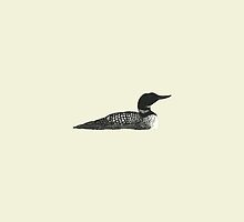 Common Loon by Holly Faulkner